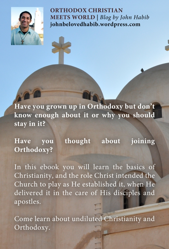 Orthodoxy Salvation Back Cover